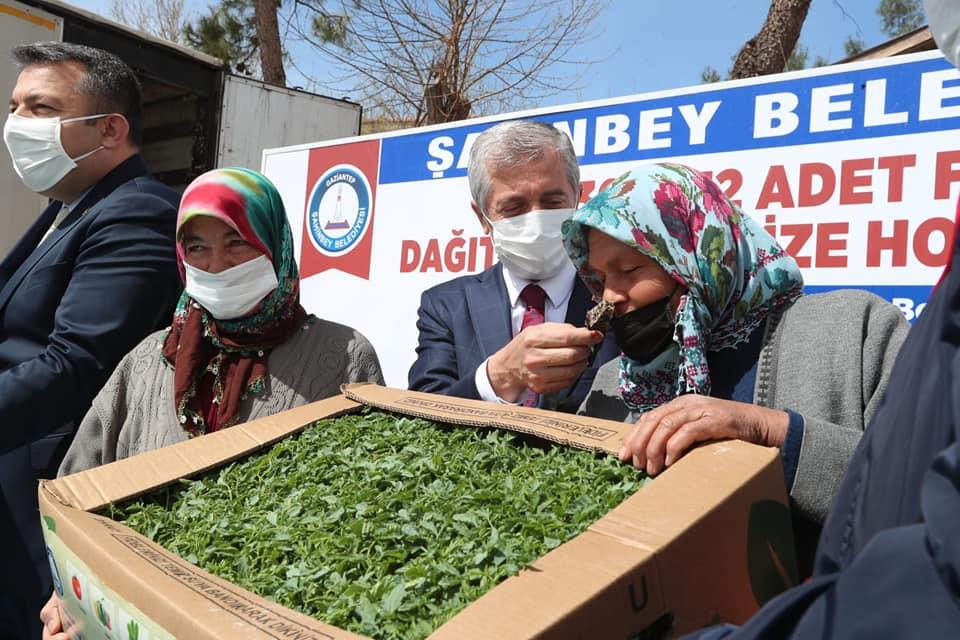 Şahinbey Belediyesi 12.301.932 fide dağıtımını Sarıt Köyü'nde sürdürdü
